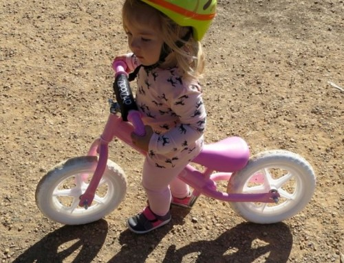 ZiPPiZAP Balance Bike Review – Bubs On The Move